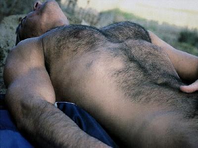 hairy hunk